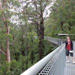 Me on the tree top walk