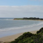 Torquay coastline