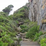 Walking trail at the Robberg Nature Reserve