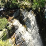 A waterfall near The Fernery