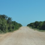 The road through Addo