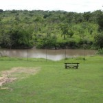 Hippo pool just outside Nkambeni camp