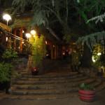 Moyo restaurant