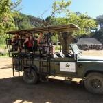 """Big five"" wine safari"