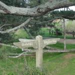 Signpost inside Hobbiton